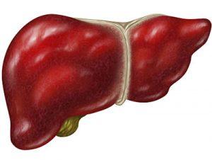 TAF乙肝药物好在哪里?